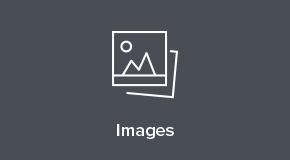 Skillshare images
