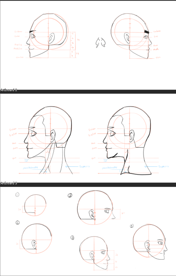 Profile Face Study - image 1 - student project