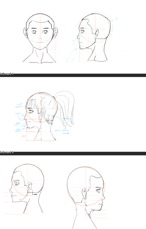 Profile Face Study - image 2 - student project