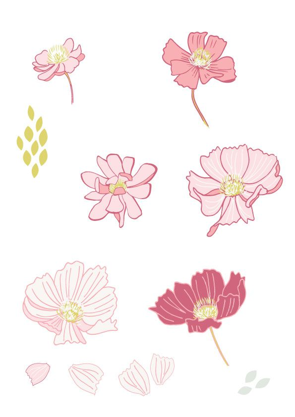 Cosmos Flowers - image 3 - student project