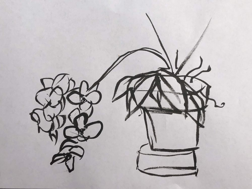 Orchid - image 12 - student project