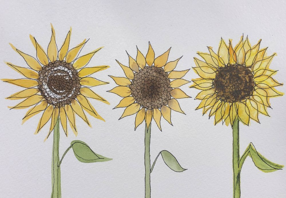 One-Line Calla Lilies & Sunflowers - image 3 - student project