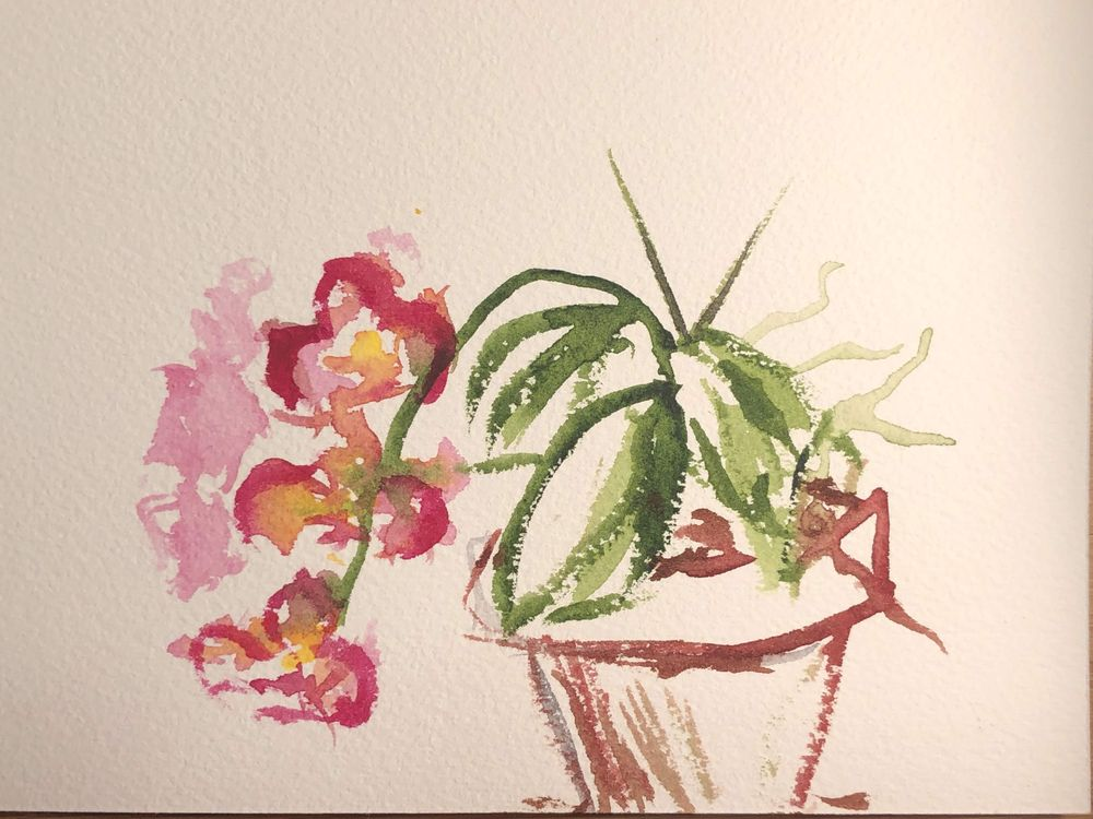 Orchid - image 10 - student project