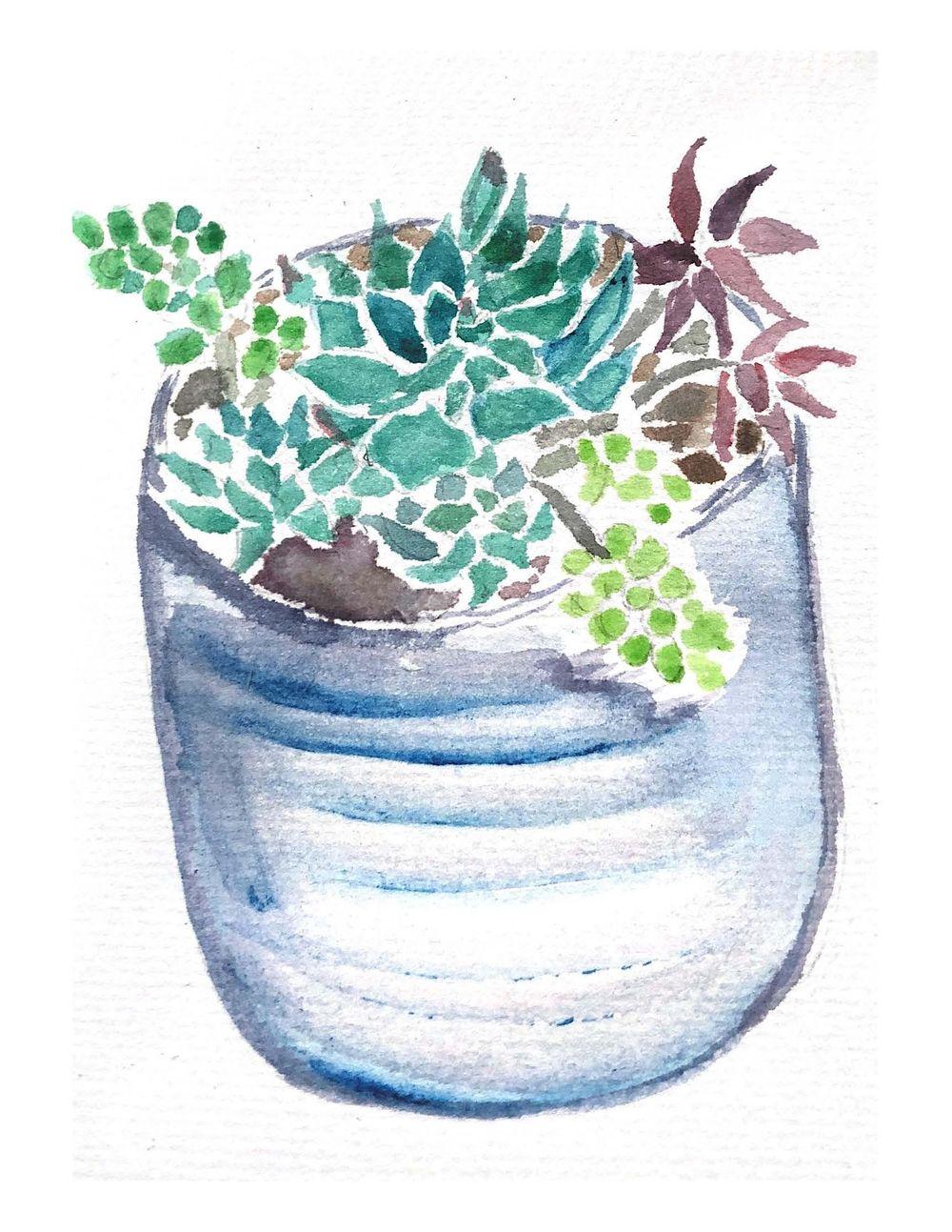 Succulents-K. Arista - image 1 - student project