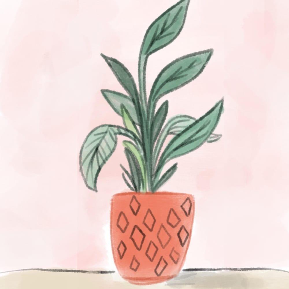 Digital Watercolor Illustration (Teacher's Sample Project) - image 1 - student project