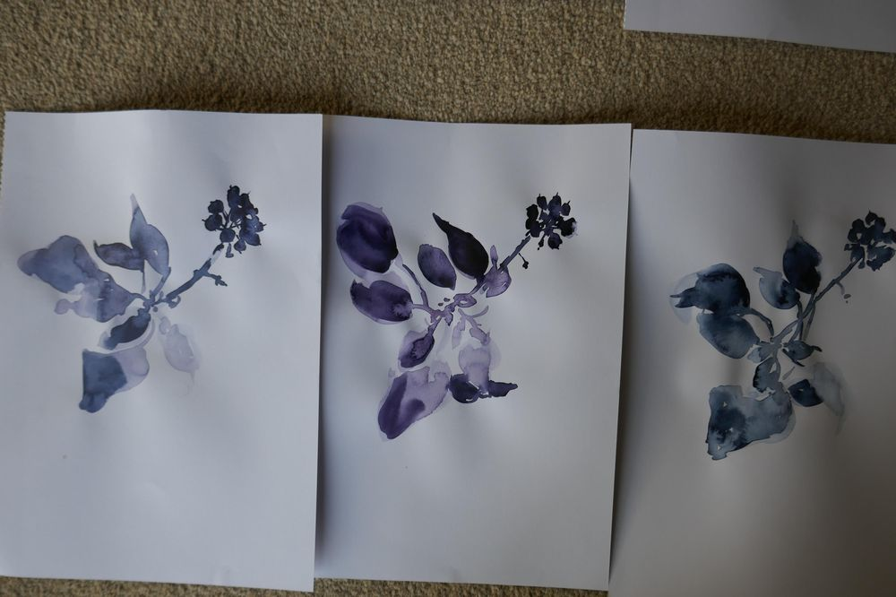 Wildflowers - image 4 - student project