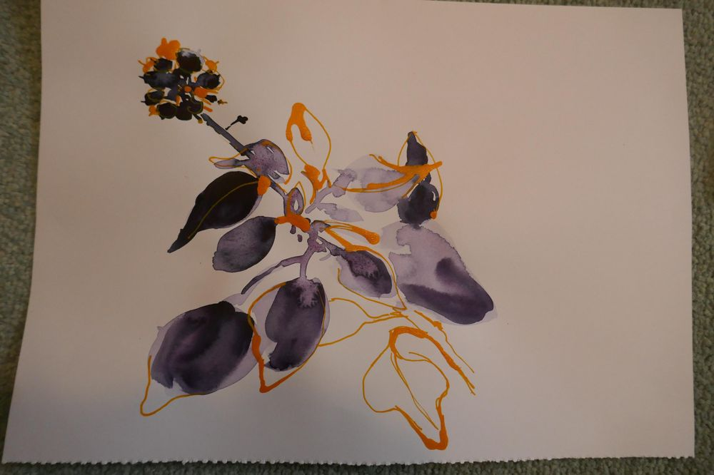 Wildflowers - image 7 - student project