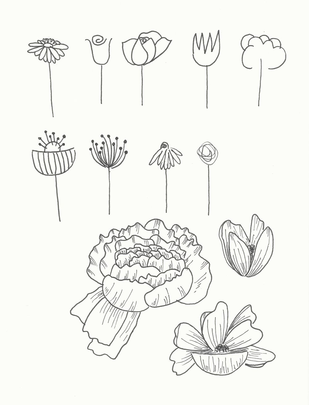 Teapots and Flowers - image 3 - student project