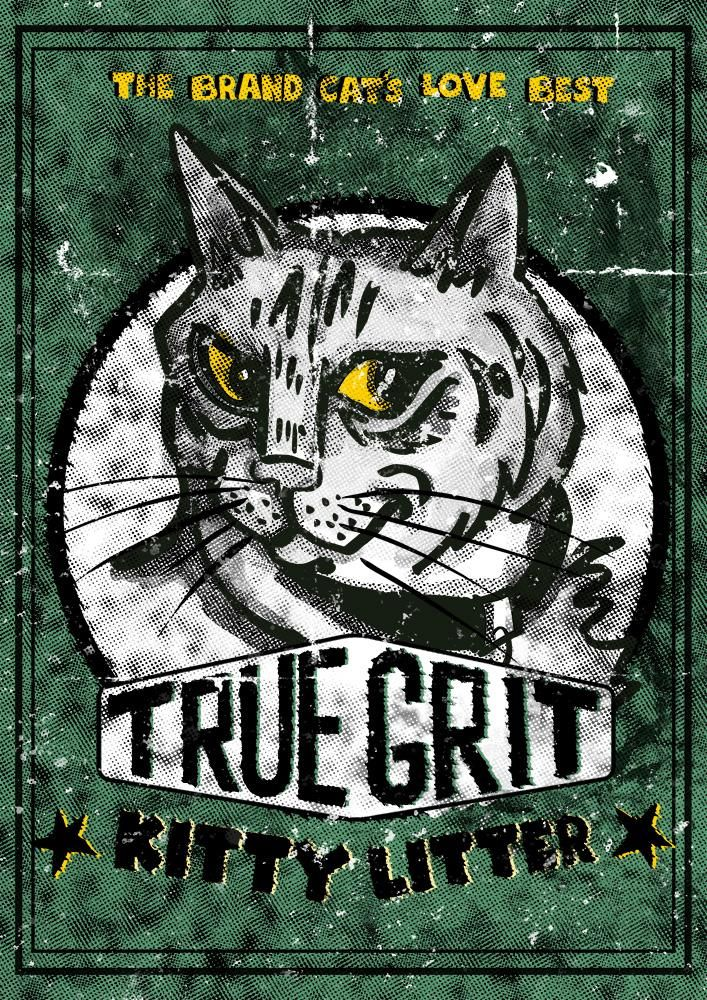 True Grit, Kitty - image 6 - student project