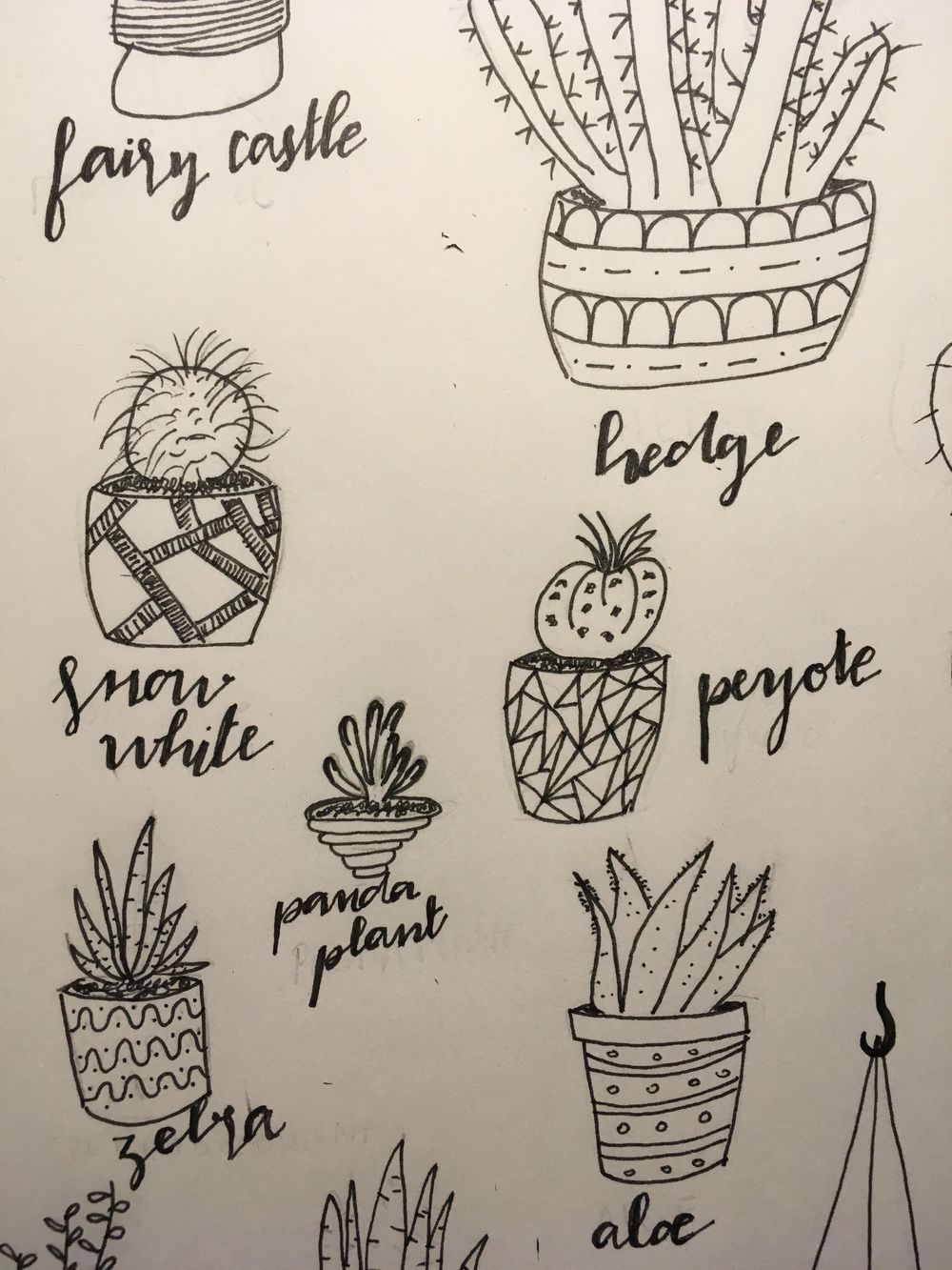 Drawing cactus...  - image 1 - student project