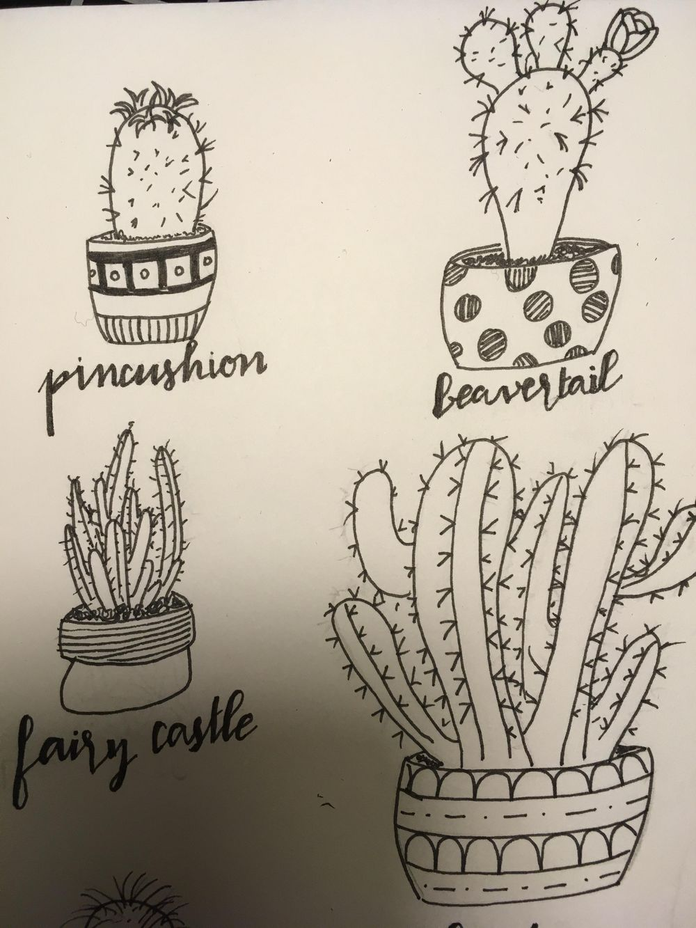 Drawing cactus...  - image 2 - student project
