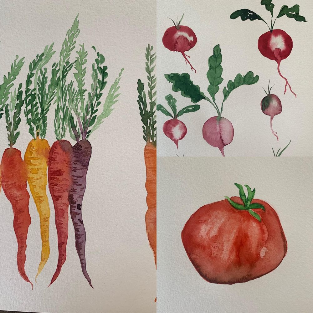 Watercolor veggies - image 1 - student project