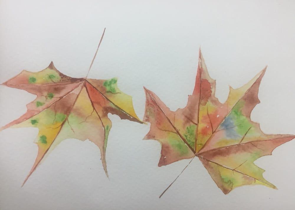 My Beginning Watercolor Portfolio - image 4 - student project
