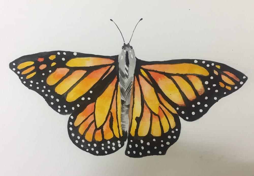 My Beginning Watercolor Portfolio - image 6 - student project