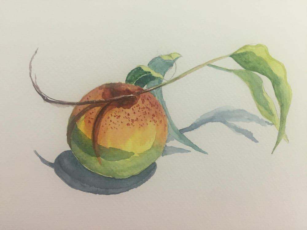 My Beginning Watercolor Portfolio - image 7 - student project