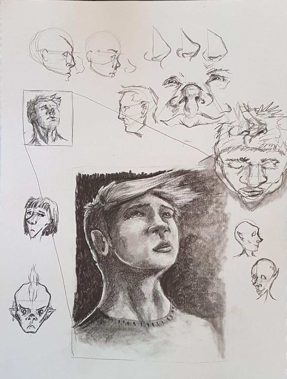 Noses - image 1 - student project