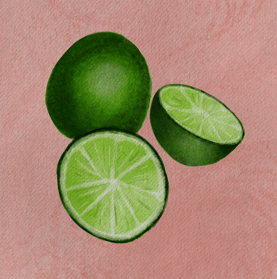 Fruit Slices - image 1 - student project