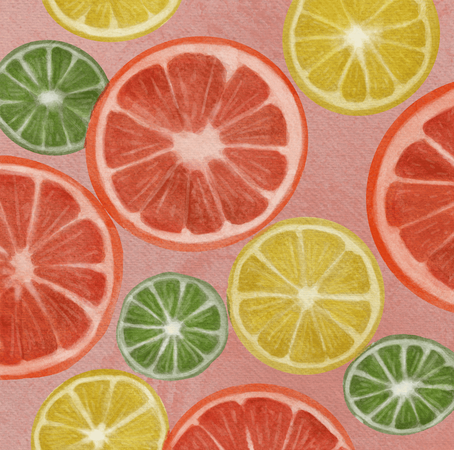 Fruit Slices - image 2 - student project