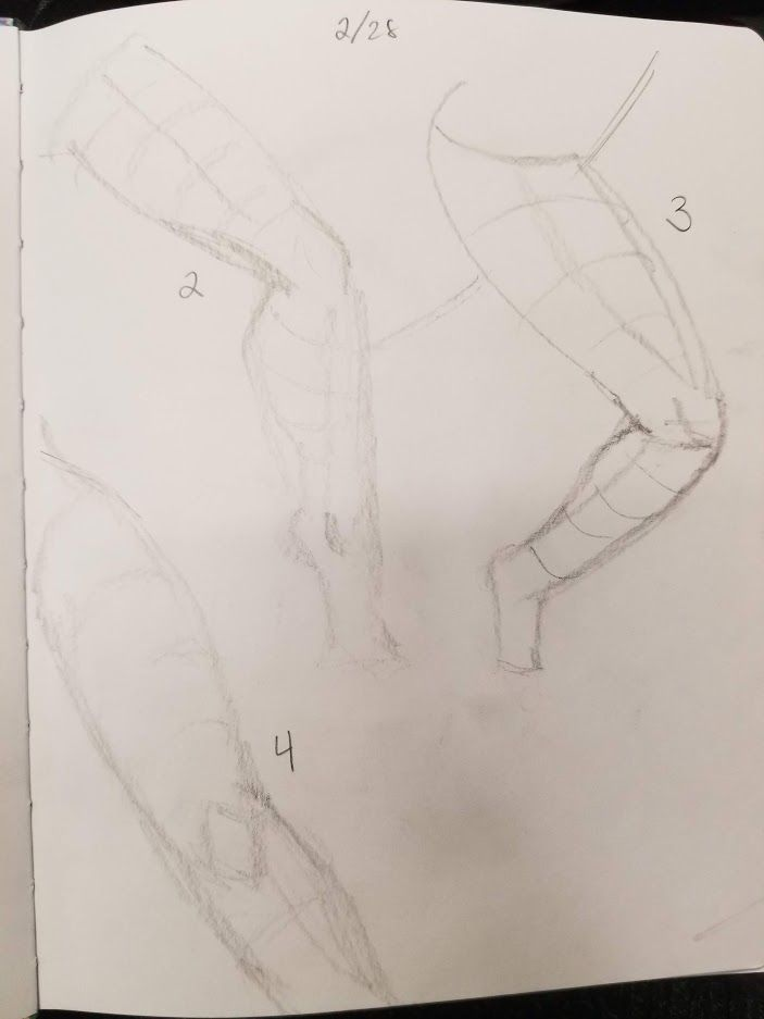 Basic Forms and Figures - image 11 - student project