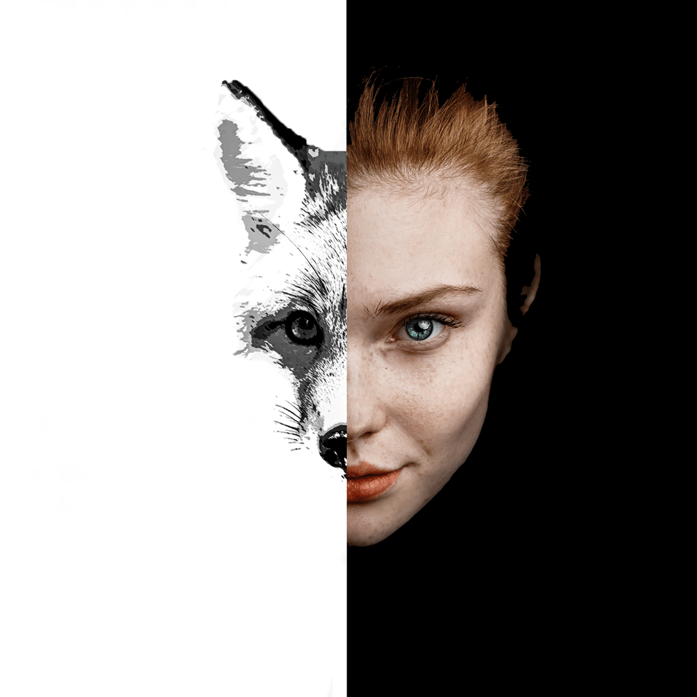 Foxy lady - image 1 - student project