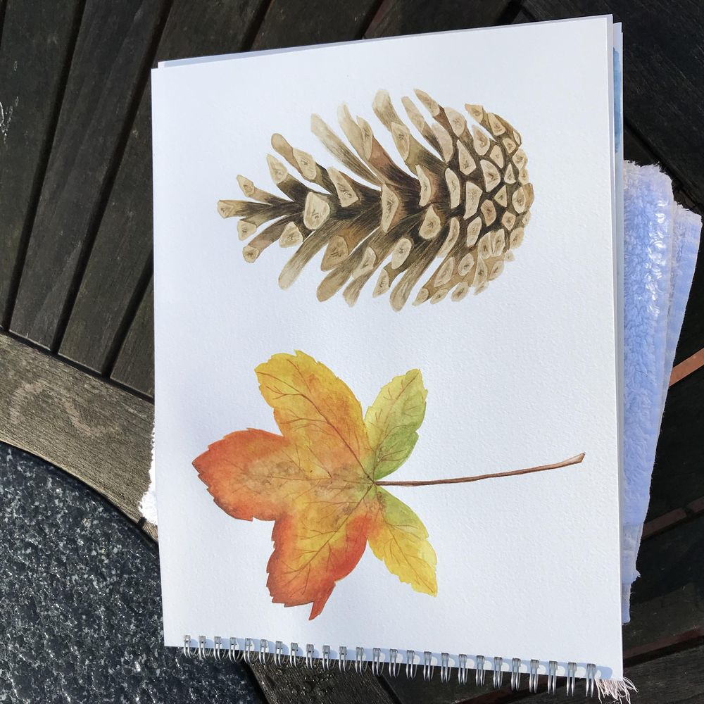 Autumn Beauties! - image 1 - student project