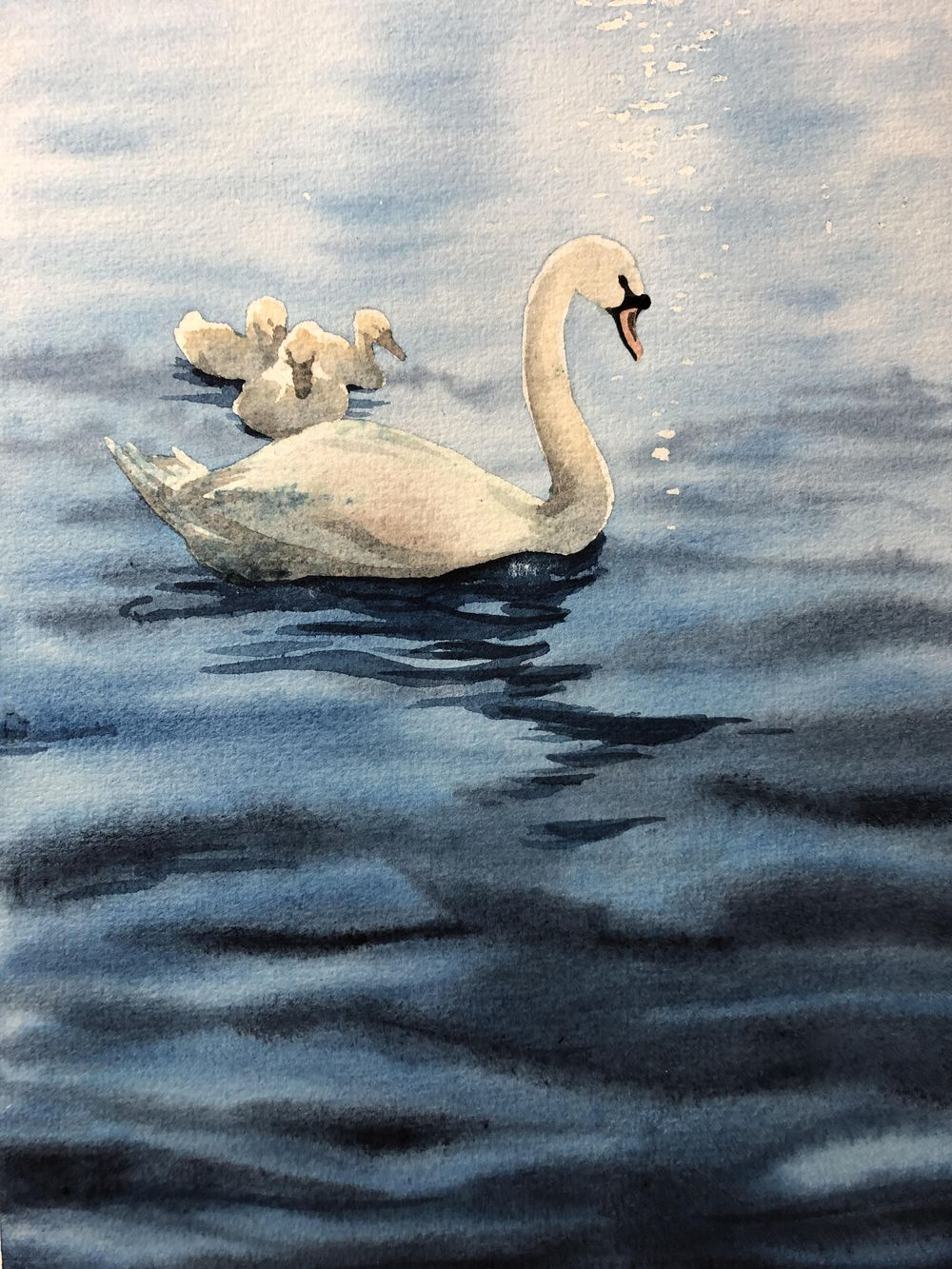 Swan Lake Adventure - image 1 - student project
