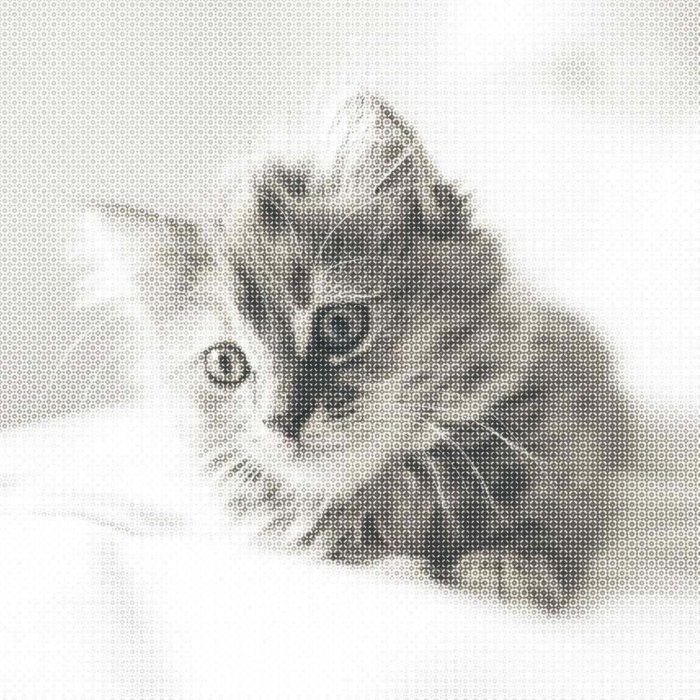 Halftone Cat - image 7 - student project
