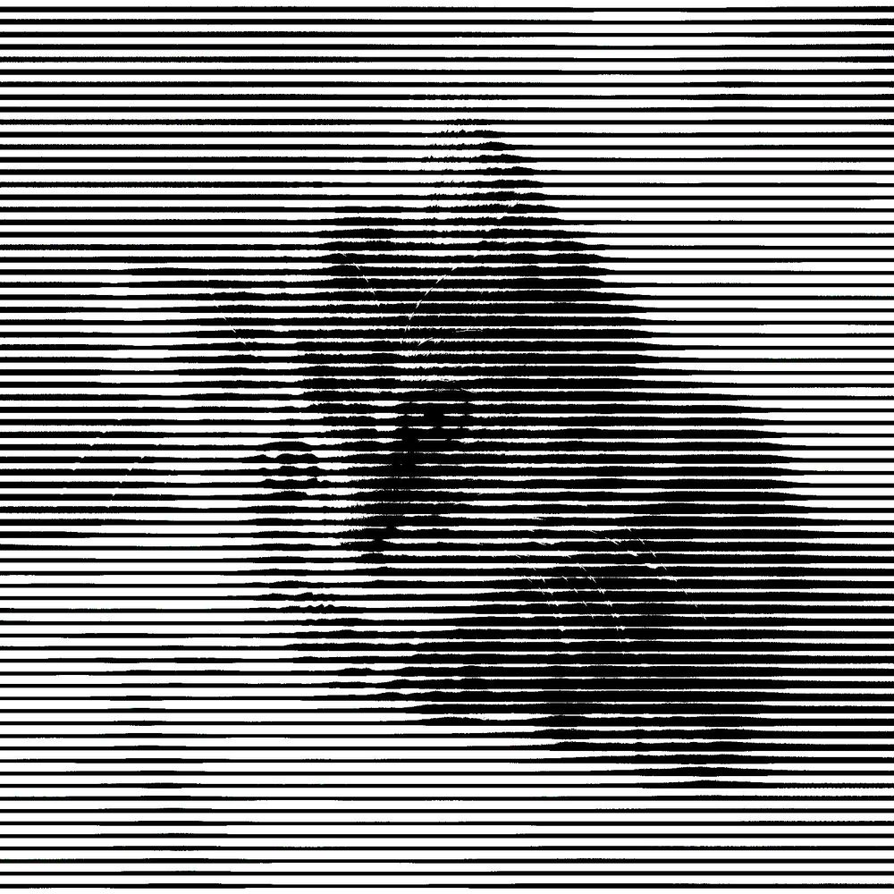 Halftone Cat - image 3 - student project