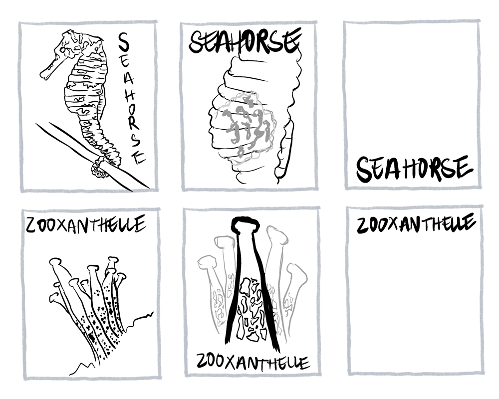 the science gal - 26 ways the ocean inspires - image 9 - student project