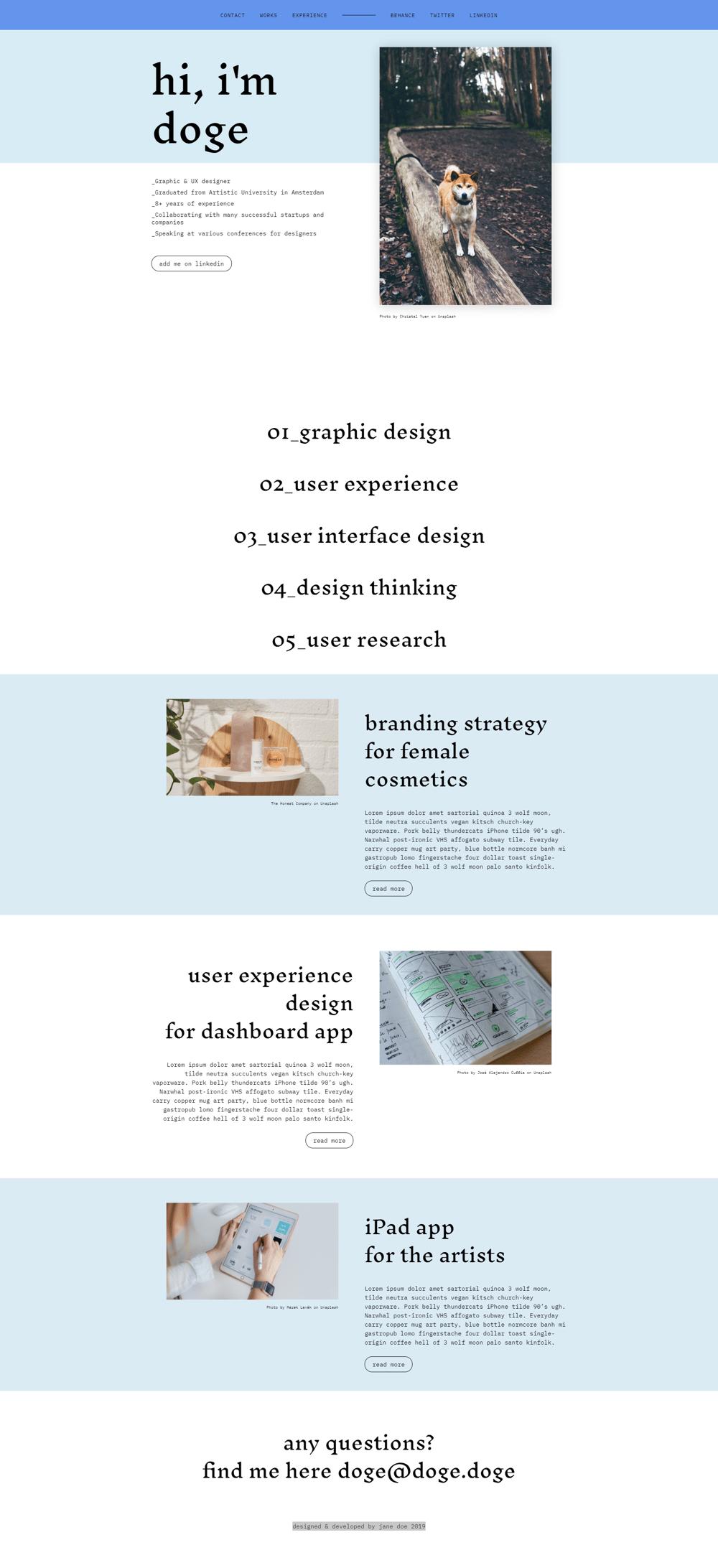 Doge portfolio example site - image 1 - student project