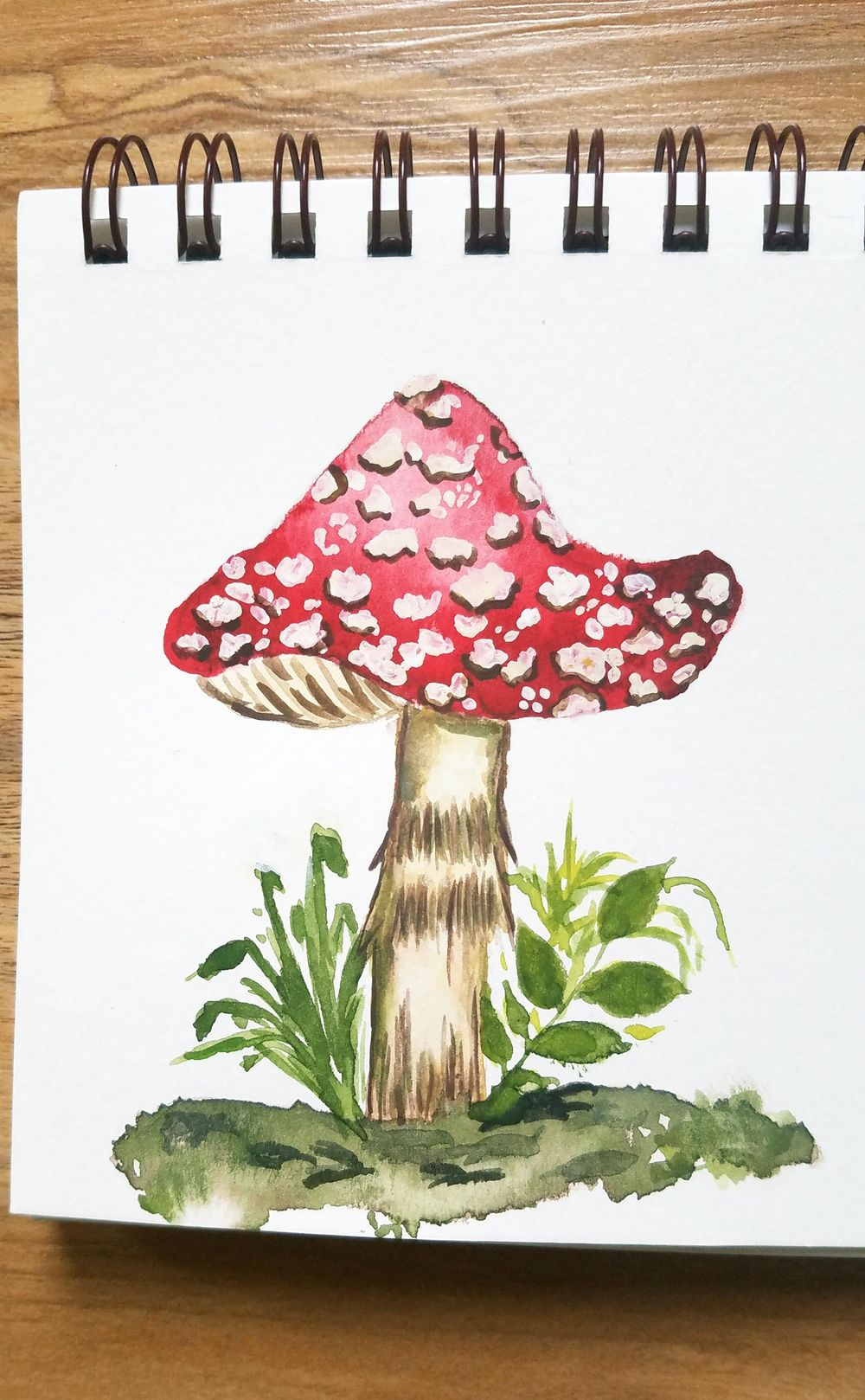 Fly Agaric Mushroom - image 1 - student project