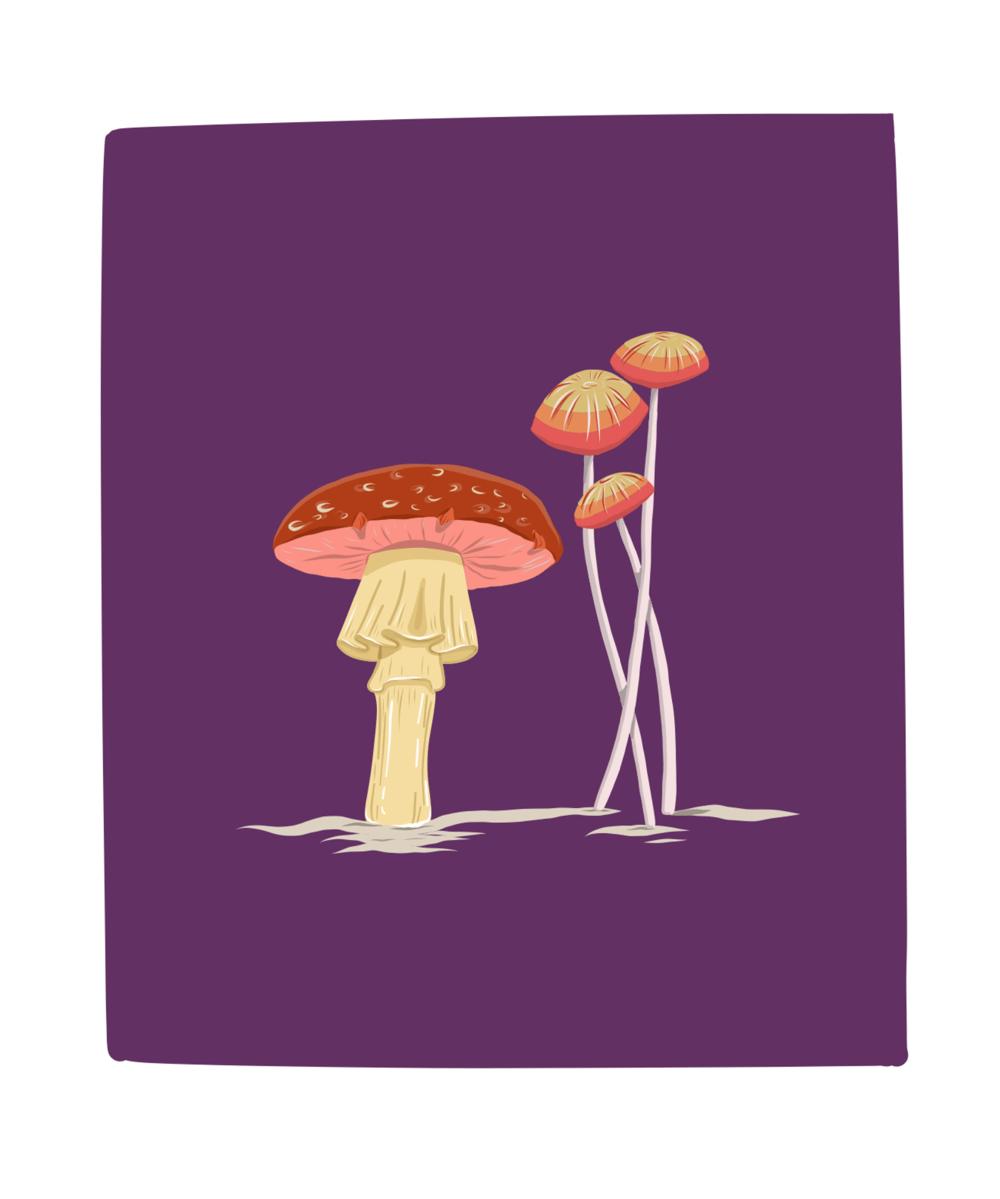 My Mushrooms - image 1 - student project
