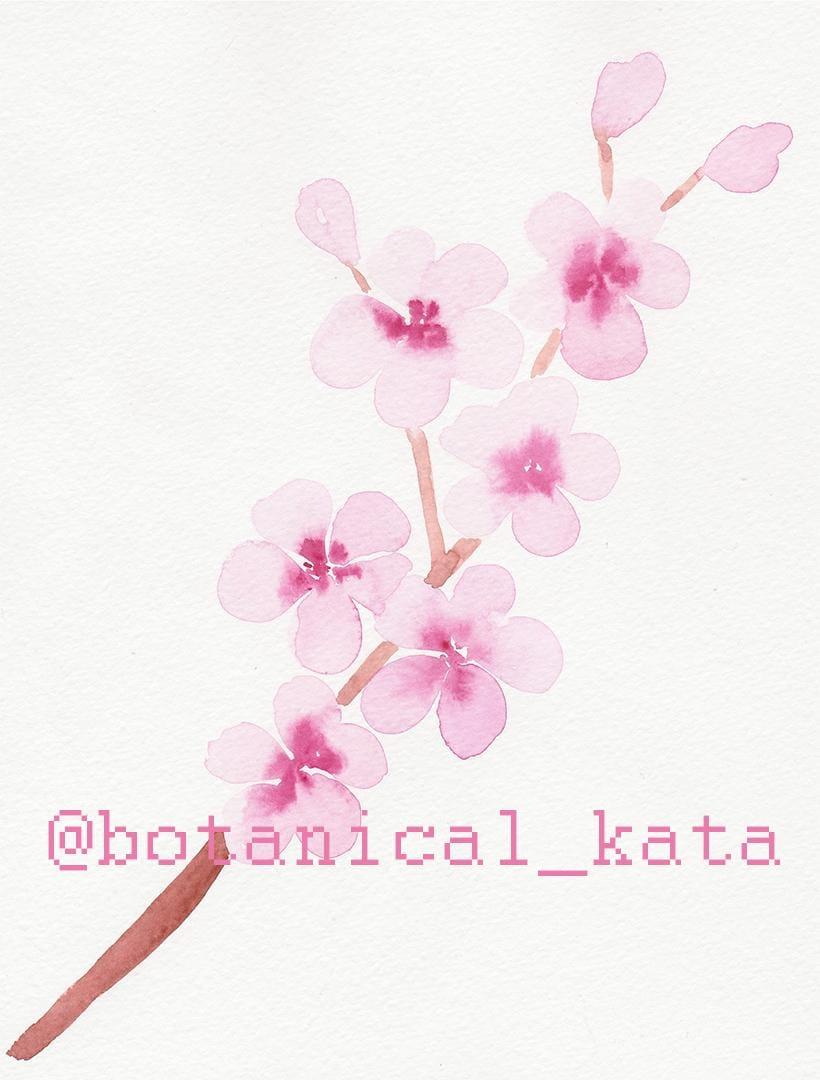 Sakura pattern - image 1 - student project