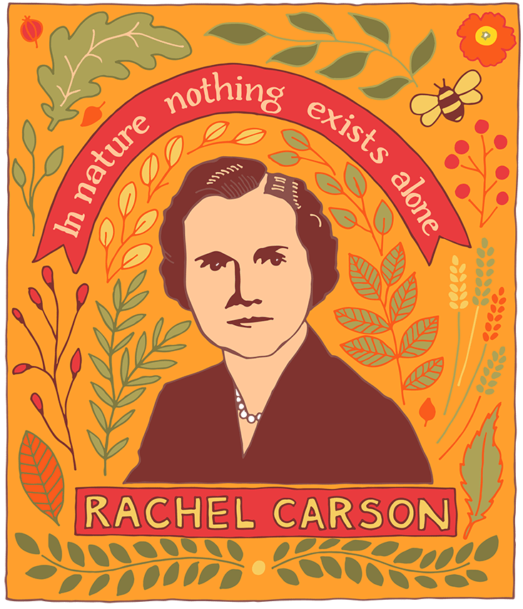 Rachel Carson - image 2 - student project