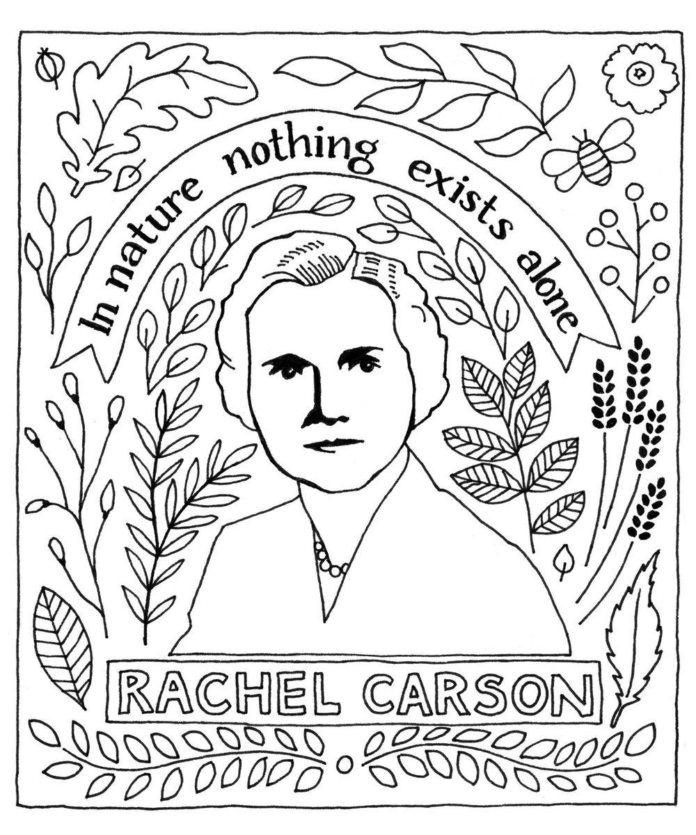 Rachel Carson - image 1 - student project