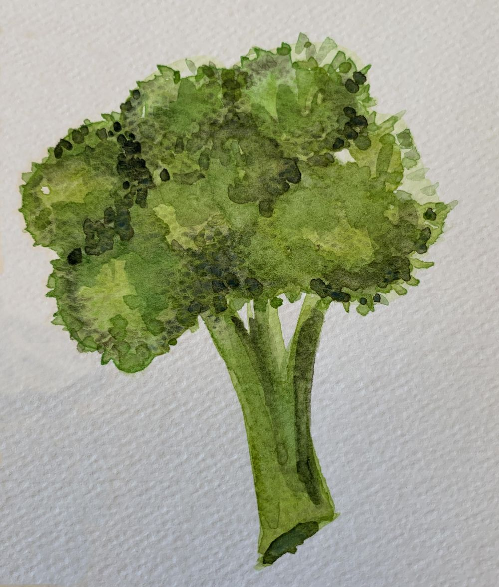 Robyn's veggies - image 6 - student project