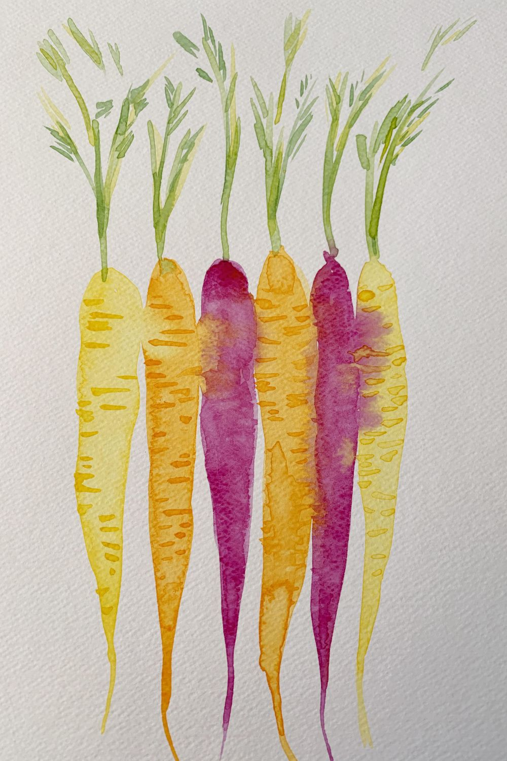 Robyn's veggies - image 2 - student project