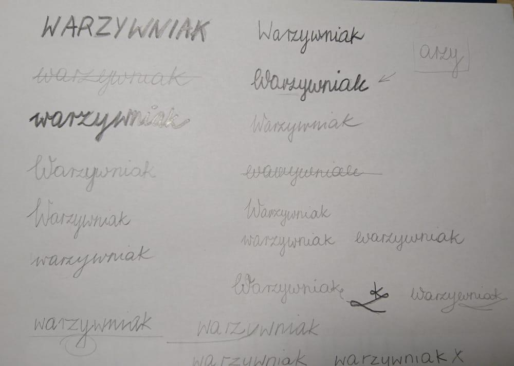 Warzywniak - image 2 - student project