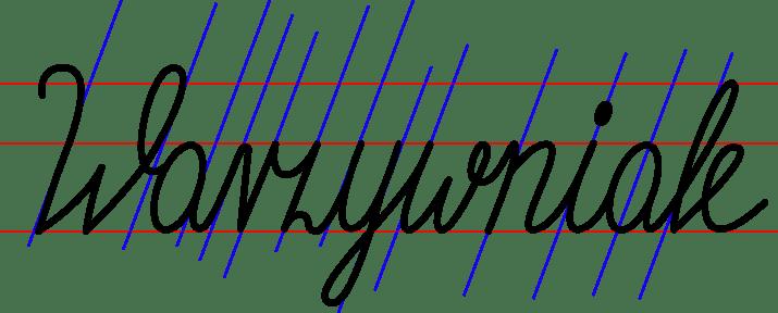 Warzywniak - image 6 - student project