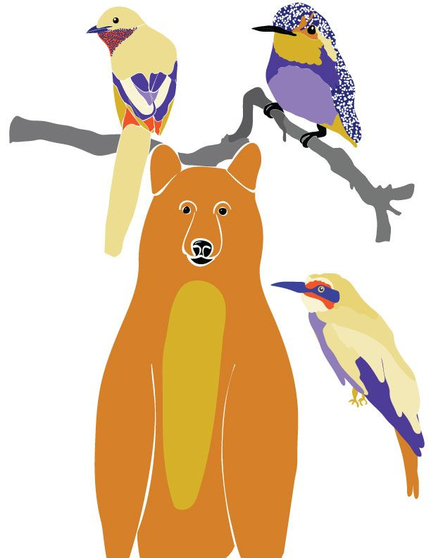Birds and Bears, a California May - image 5 - student project