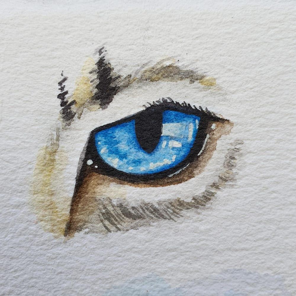 Animal Eyes   Ariana Iacono - image 1 - student project