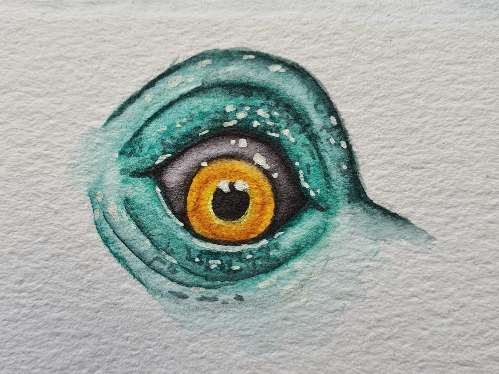 Animal Eyes   Ariana Iacono - image 4 - student project