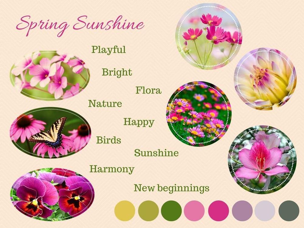 Spring Sunshine - image 6 - student project
