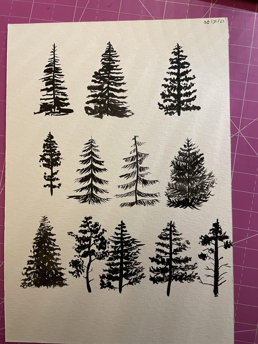 Pine trees class - image 1 - student project