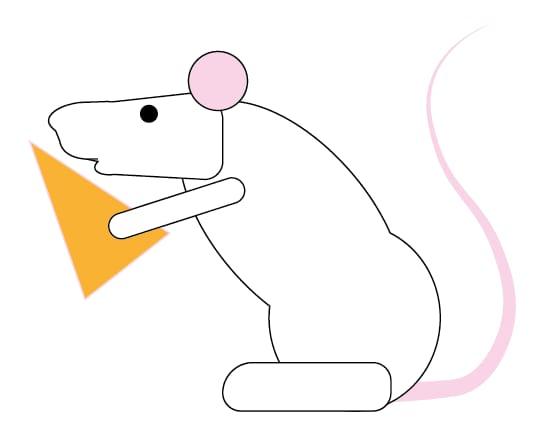 Rat - image 1 - student project