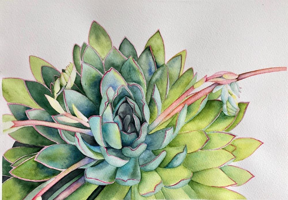 Succulent - Louise de Masi tutorial - image 3 - student project