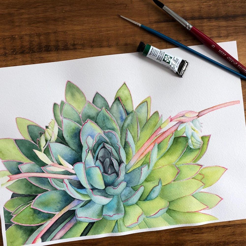 Succulent - Louise de Masi tutorial - image 1 - student project