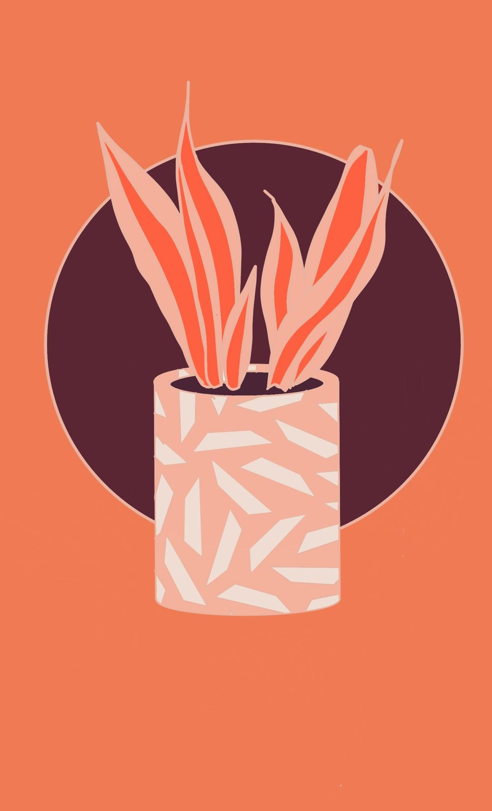 Snake Plant - image 1 - student project