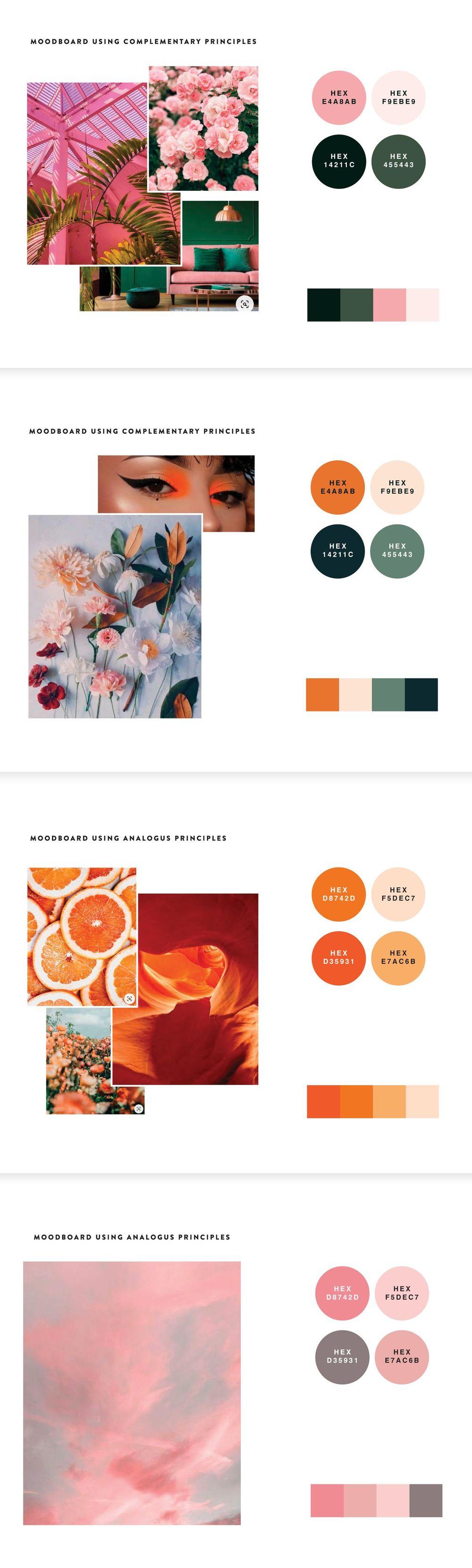Color studies - image 3 - student project