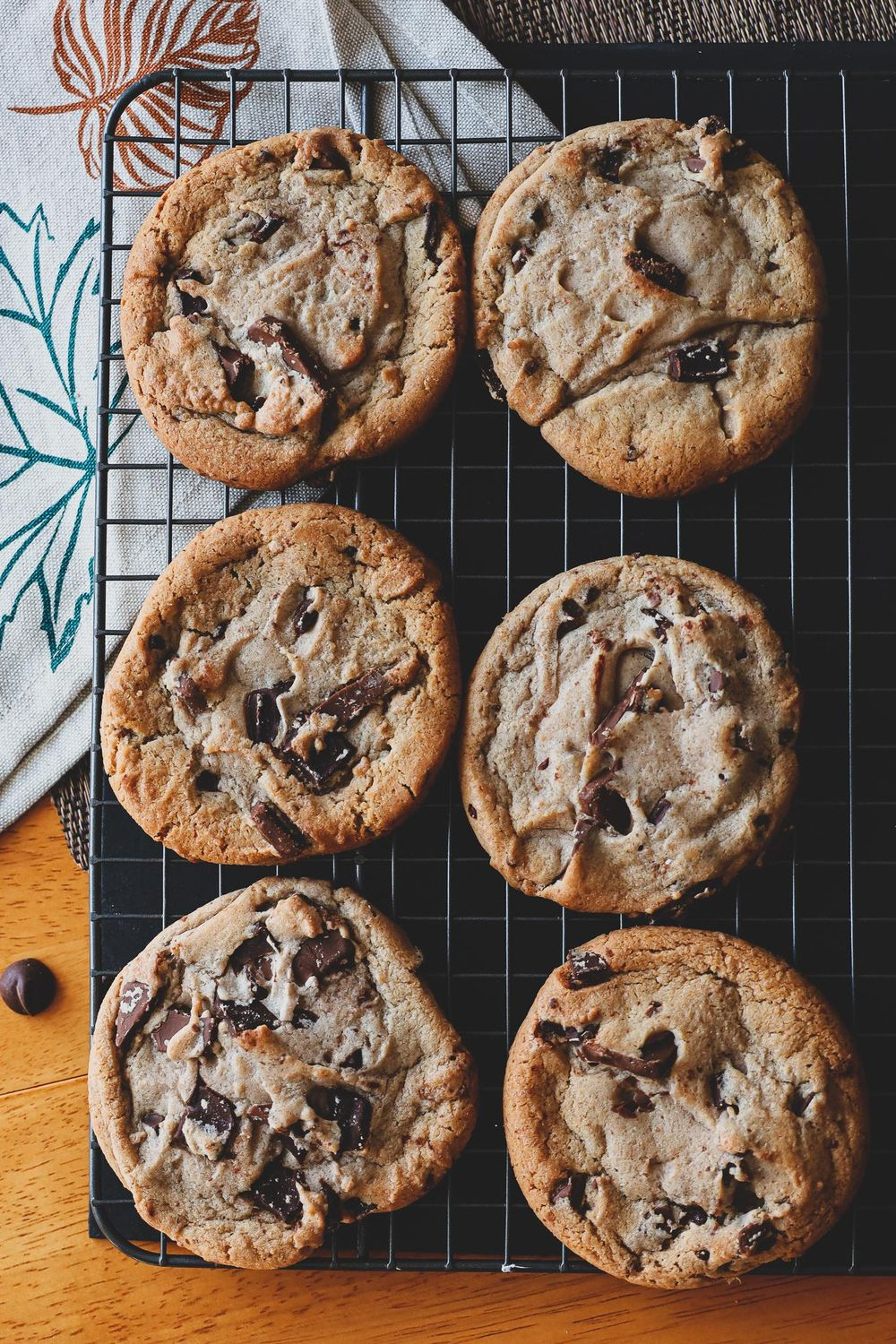 chocolate chip. - image 1 - student project